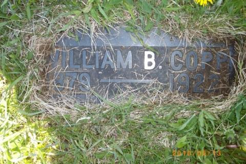 IMGP0954 (Large)